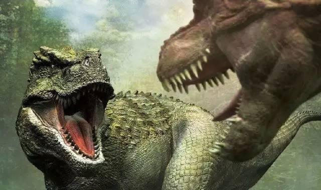 """中国资本市场已经进入""""恐龙时代"""""""